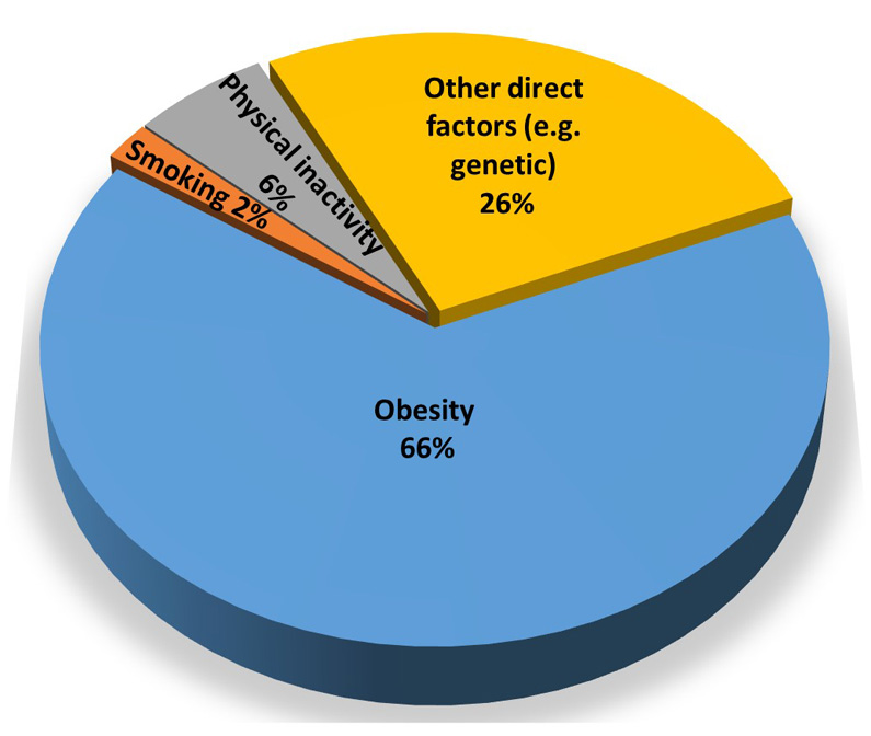 Fraction of diabetes cases that are due to obesity, smoking, physical inactivity, and other factors by 2050, according to projections by WCM-Q researchers.