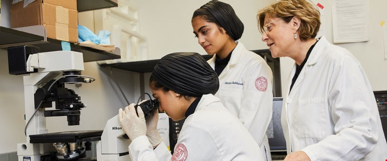 The winning students will spend time in the world-class biomedical research laboratories at Weill Cornell Medicine in New York
