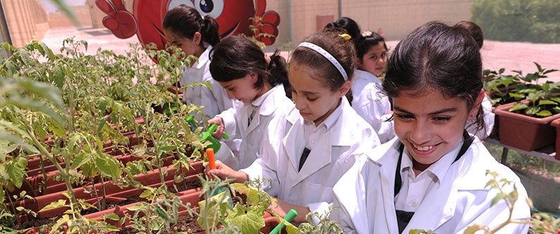 Project Greenhouse has been invaluable in teaching children about healthy diets, sustainability and how to grow fruits and vegetables.