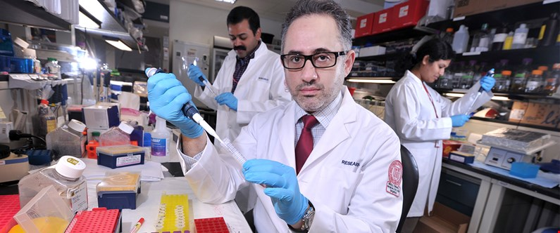 Dr. Hani Najafi specializes in the interactions between microRNA and RNA.
