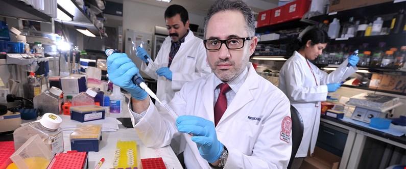 Home | Weill Cornell Medicine - Qatar