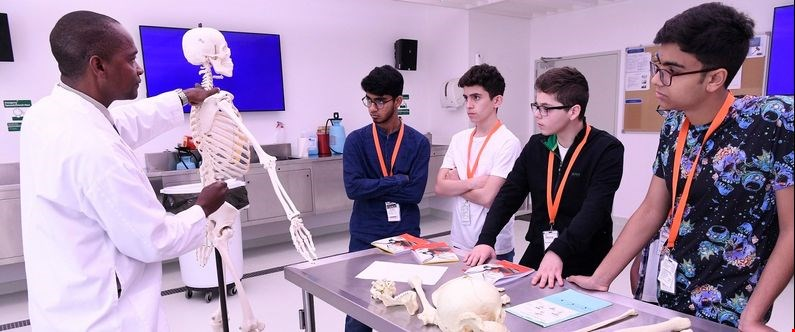 High school students on the WCM-Q summer enrichment program take an anatomy class.